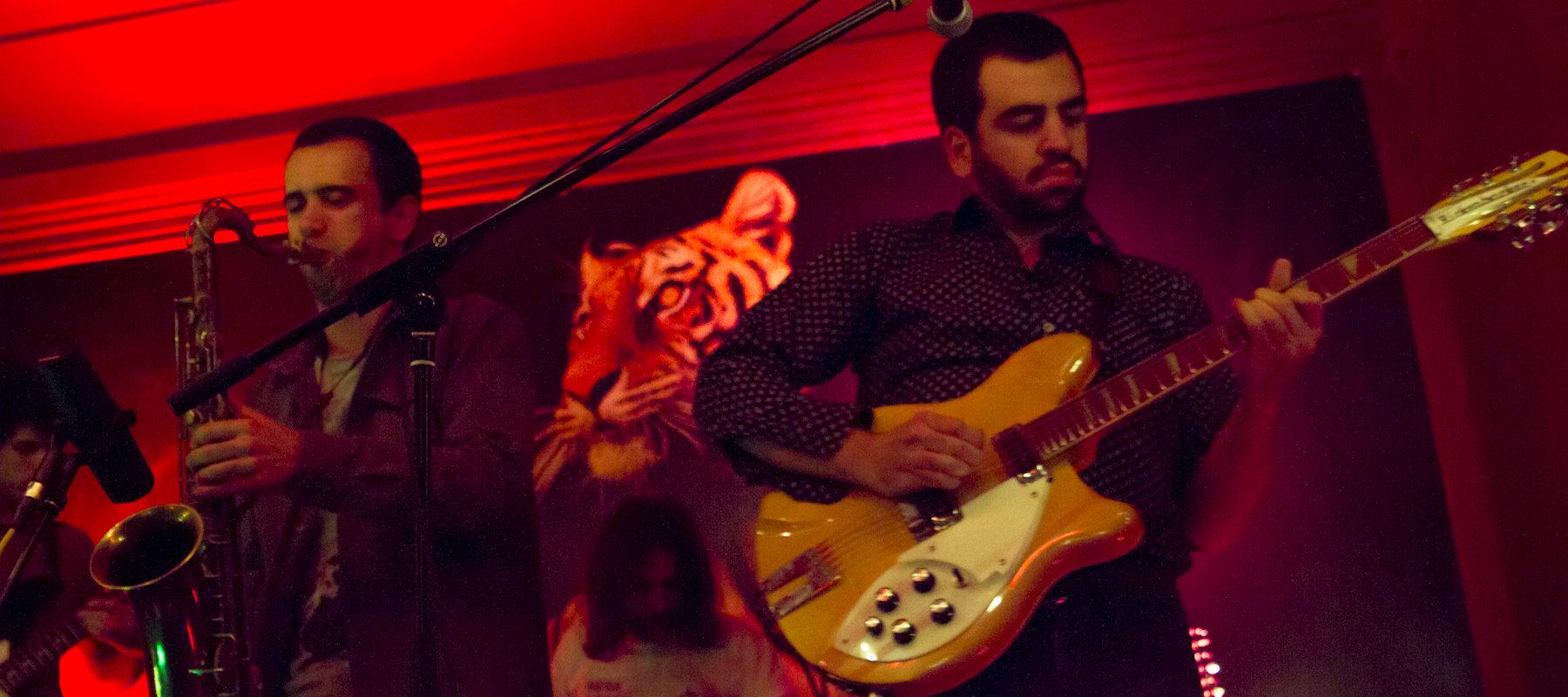 Permalink to: Basset Hounds apresentam novo disco na Casa Independente | Reportagem Fotográfica